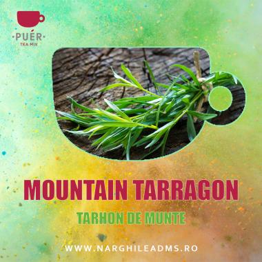 AROMA NARGHILEA PUER MOUNTAIN TARRAGON -TARHON DE MUNTE 100g