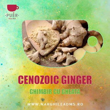 Aroma Narghilea PUER CENOZOIC GINGER - GHIMBIR CU GHEATA 100g