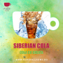 Aroma Narghilea PUER SIBERIAN COLA - COLA CU GHEATA 100g