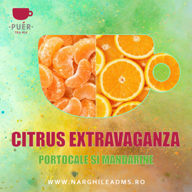 Aroma Narghilea PUER CITRUS EXTRAVAGANZA - PORTOCALE SI MANDARINE 100g